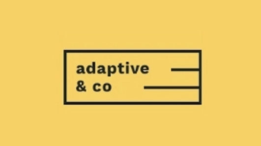 Adaptive appoints Cathal Gillen as new Managing Director, eyes further international growth